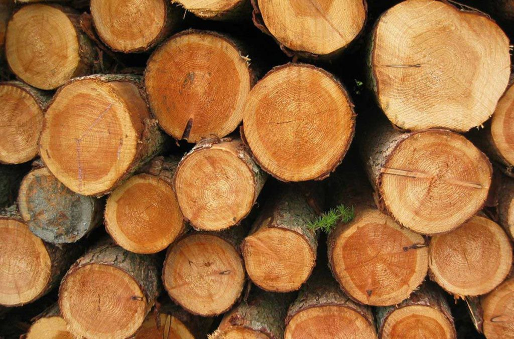 pakovanje drvna industrija
